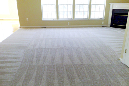 Clean carpet in Romeo Michigan